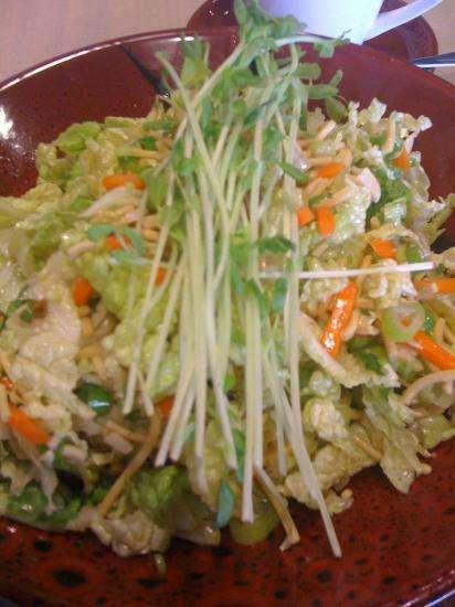 asian style chicken salad