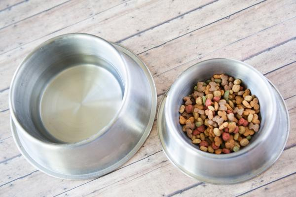 Could gluten-free pet food be the next big thing? Photo: CC--Franchise Opportunities.