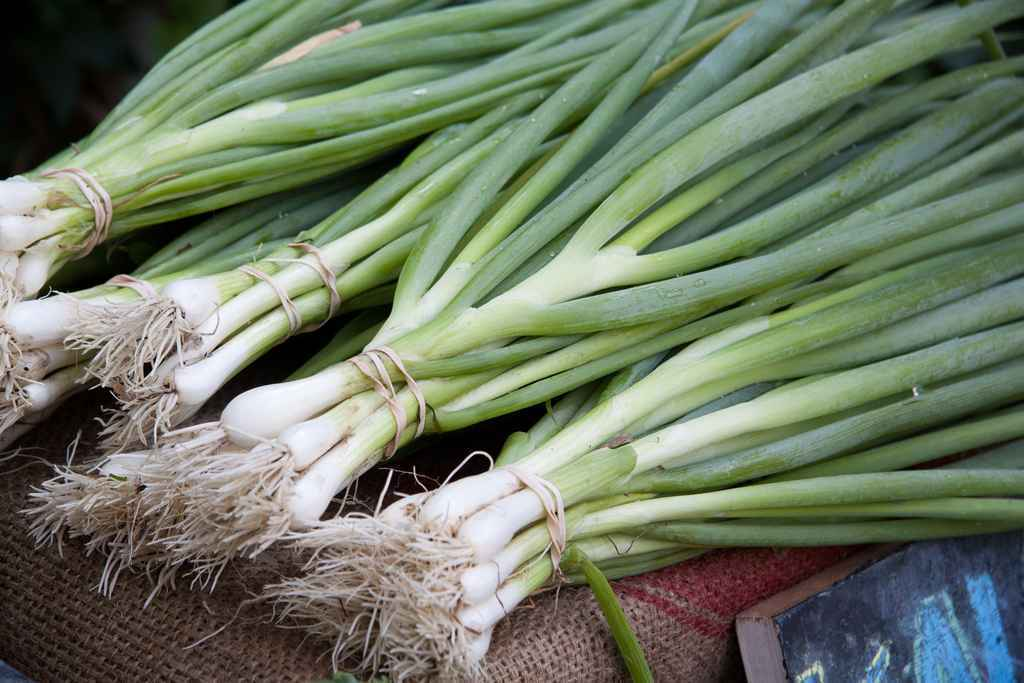 Grilled Scallions with Lime (Gluten-Free) - Gluten-Free ...